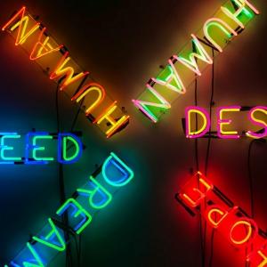 Neon words 'human' 'need' 'desire'