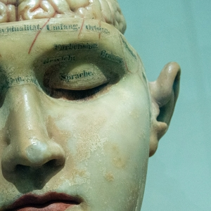 Statue of a person with brain exposed