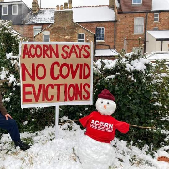'Acorn says no covid evictions'