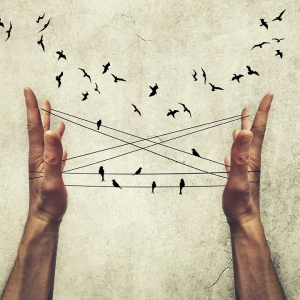 Hands doing cats cradle surrounded by birds.
