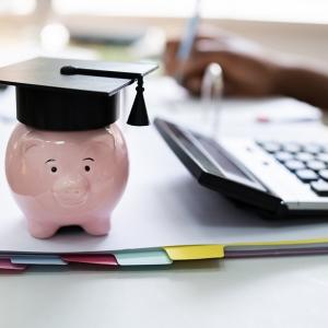 Pig wearing a graduation cap.